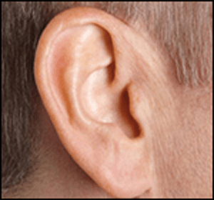 Hearing Aid Centre Chennai Types of Hearing aid  Hearing Aid Centre Chennai Types of Hearing aid  Hearing Aid Centre Chennai Types of Hearing aid  Hearing Aid Centre Chennai Types of Hearing aid